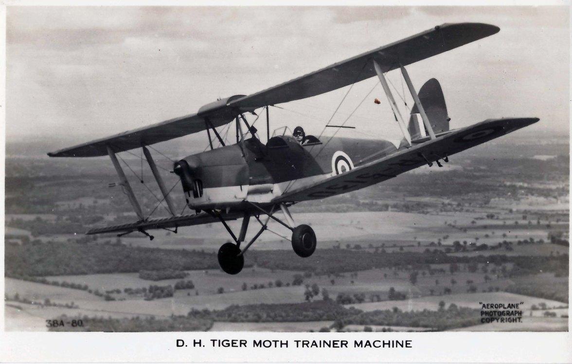 Tiger Moth 1